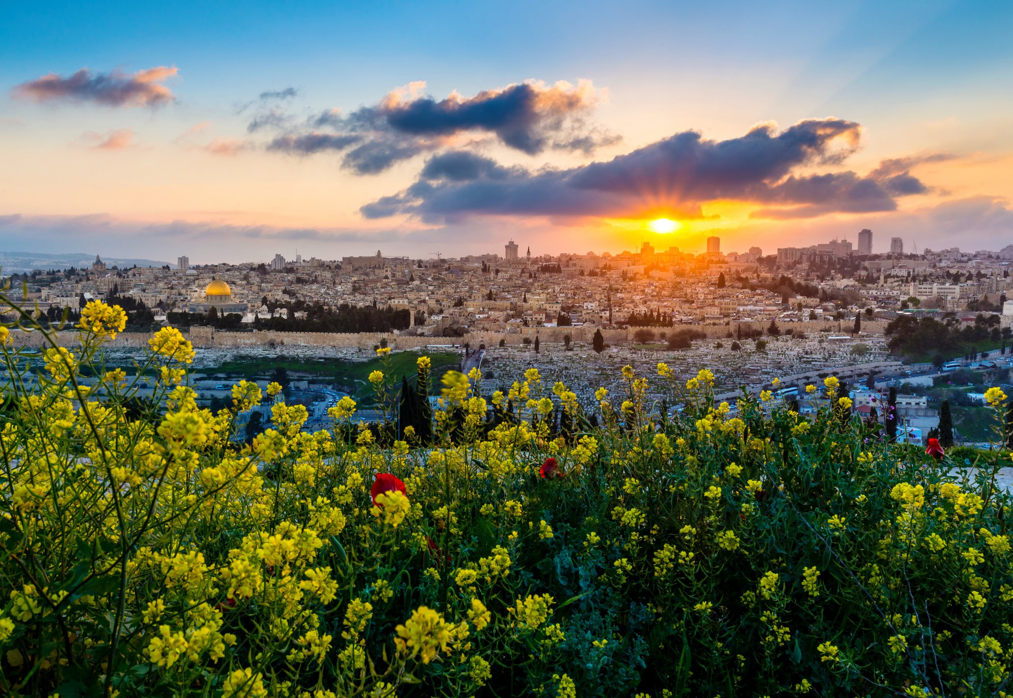 Happy New Year from beautiful Israel!